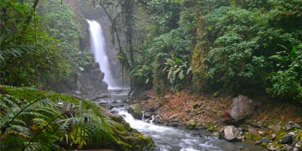 Costa Rica is a great destination for American tourists