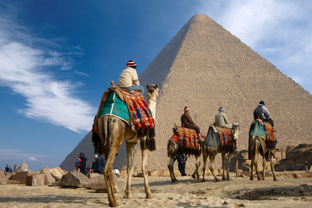 Cairo Fare Buzz
