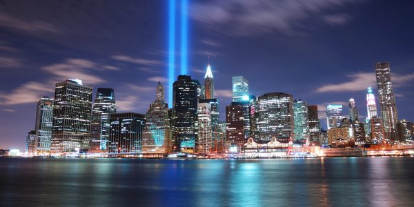 New York City For The Night Bird