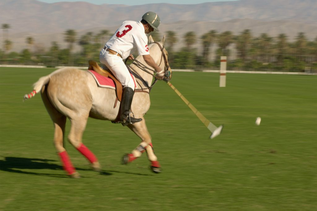 Polo Player Advancing Ball Fare Buzz