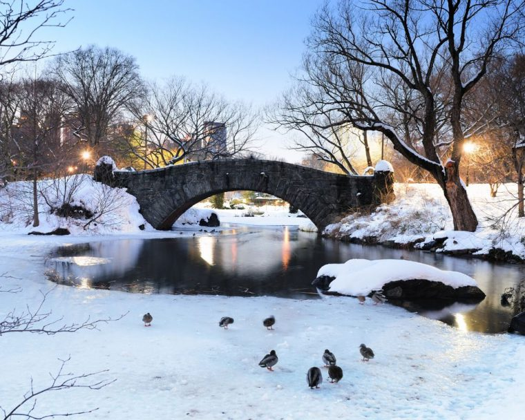 NYC_Christmas_central_park_FareBuzz