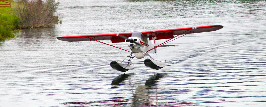 seaplane, Fare Buzz
